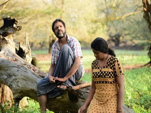 37 சர்வதேச விருதுகள்! ஒரே படம் 'ஒற்றைப் பனைமரம்'