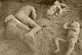 கேள்விக்குறியான மனித நேயம்